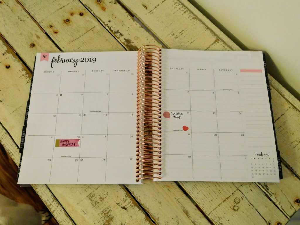 lifeplanner monthly